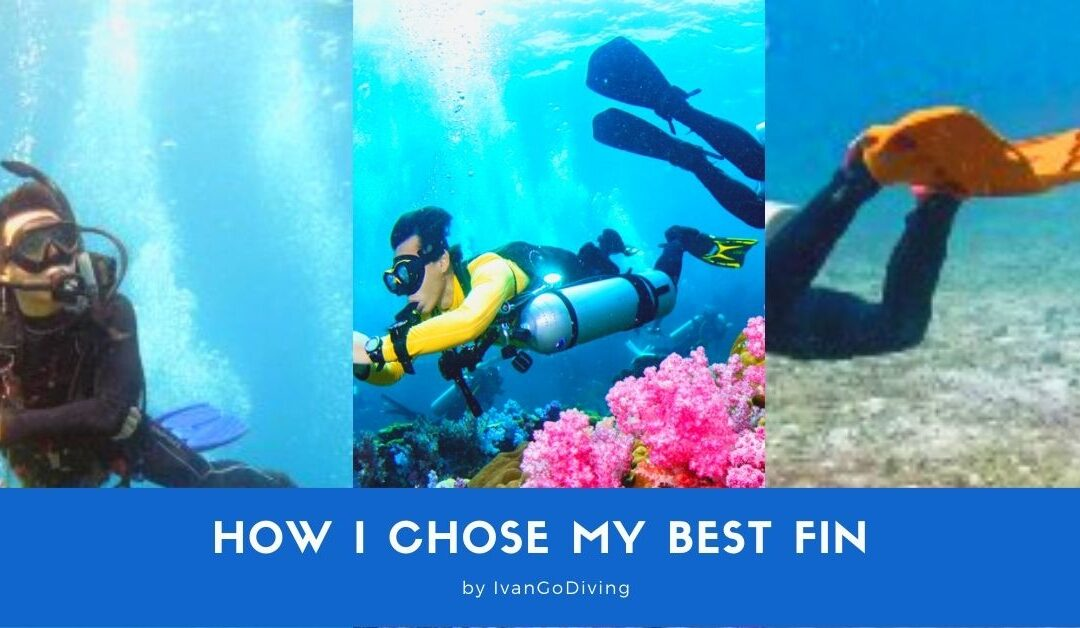 How I Chose My Best Scuba Diving Fin