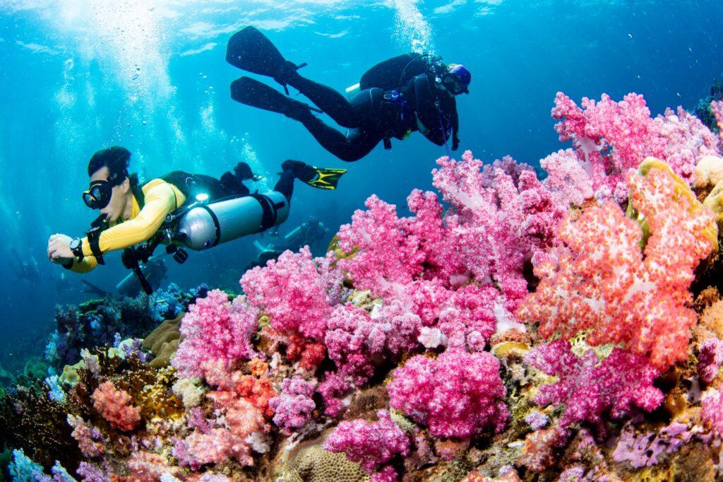 Wearing Tusa Vesna while diving at South Andaman.